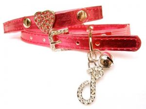 red cat collar